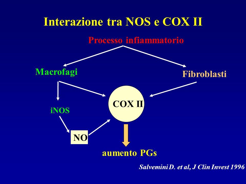 Interazione tra NOS e COX II Processo infiammatorio Macrofagi iNOS NO COX II Fibroblasti aumento PGs Salvemini D. et al, J Clin Invest 1996