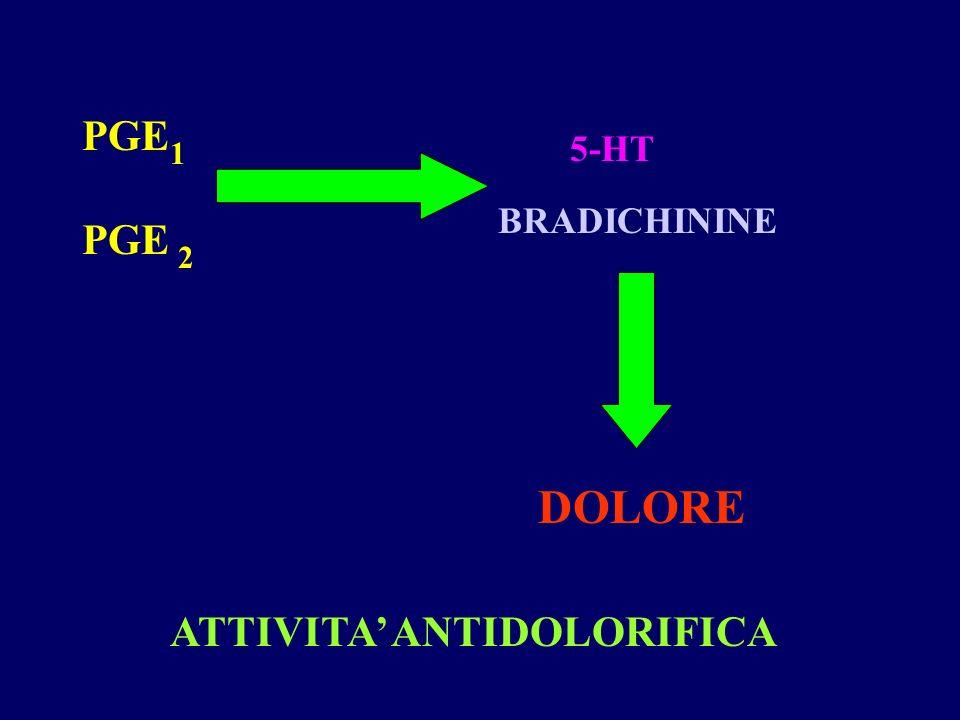 PGE 1 2 5-HT BRADICHININE DOLORE ATTIVITA ANTIDOLORIFICA