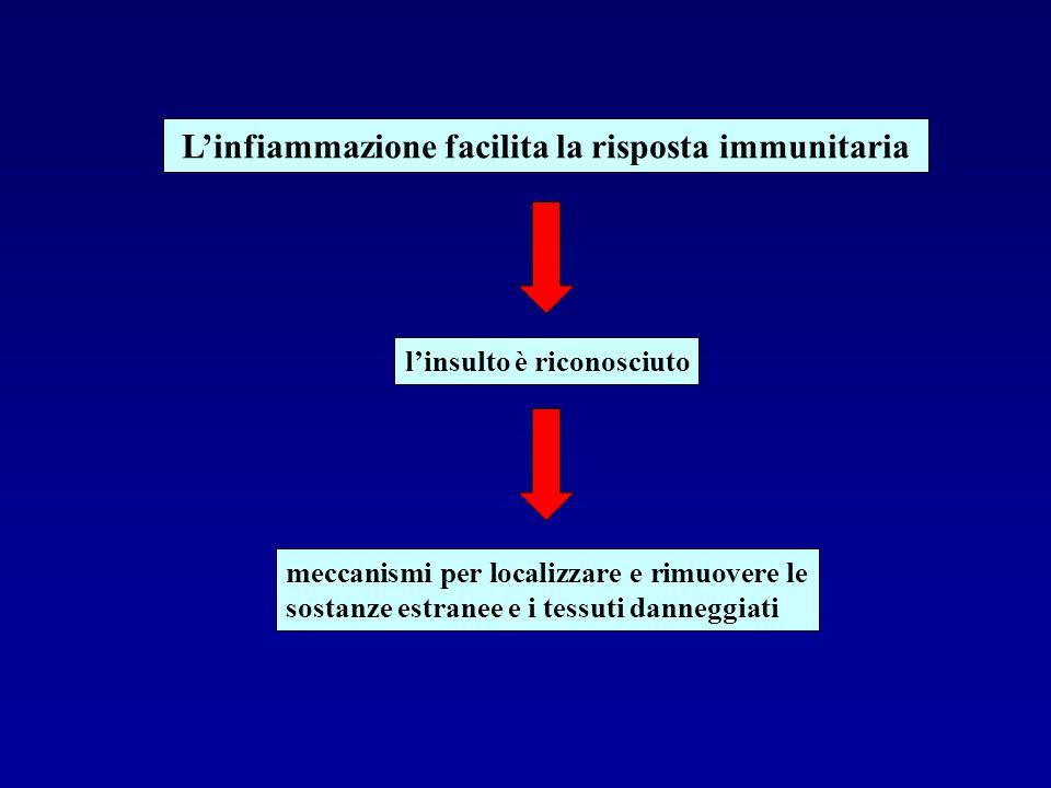 Linfiammazione facilita la risposta immunitaria linsulto è riconosciuto meccanismi per localizzare e rimuovere le sostanze estranee e i tessuti danneg