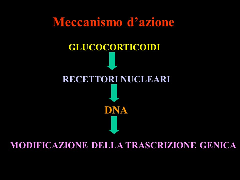 Meccanismo dazione GLUCOCORTICOIDI RECETTORI NUCLEARI DNA MODIFICAZIONE DELLA TRASCRIZIONE GENICA