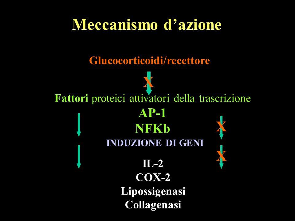 Glucocorticoidi/recettore Meccanismo dazione Fattori proteici attivatori della trascrizione AP-1 NFKb INDUZIONE DI GENI IL-2 COX-2 Lipossigenasi Colla