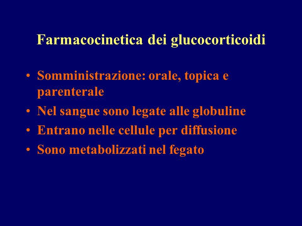 Farmacocinetica dei glucocorticoidi Somministrazione: orale, topica e parenterale Nel sangue sono legate alle globuline Entrano nelle cellule per diff