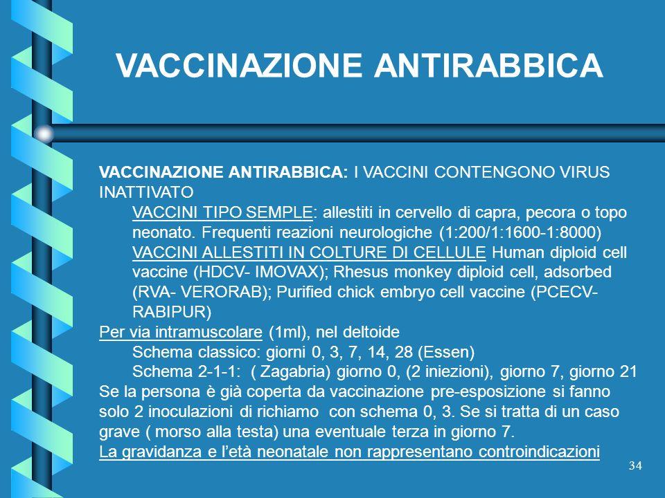 34 VACCINAZIONE ANTIRABBICA VACCINAZIONE ANTIRABBICA: I VACCINI CONTENGONO VIRUS INATTIVATO VACCINI TIPO SEMPLE: allestiti in cervello di capra, pecor