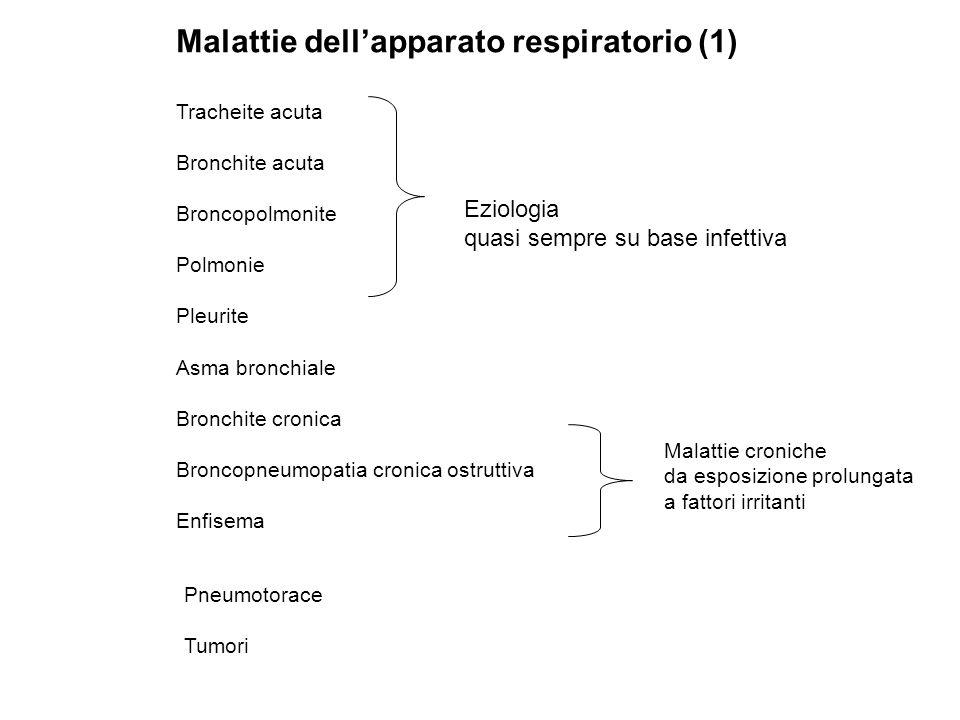 Malattie dellapparato respiratorio (1) Tracheite acuta Bronchite acuta Broncopolmonite Polmonie Pleurite Asma bronchiale Bronchite cronica Broncopneum
