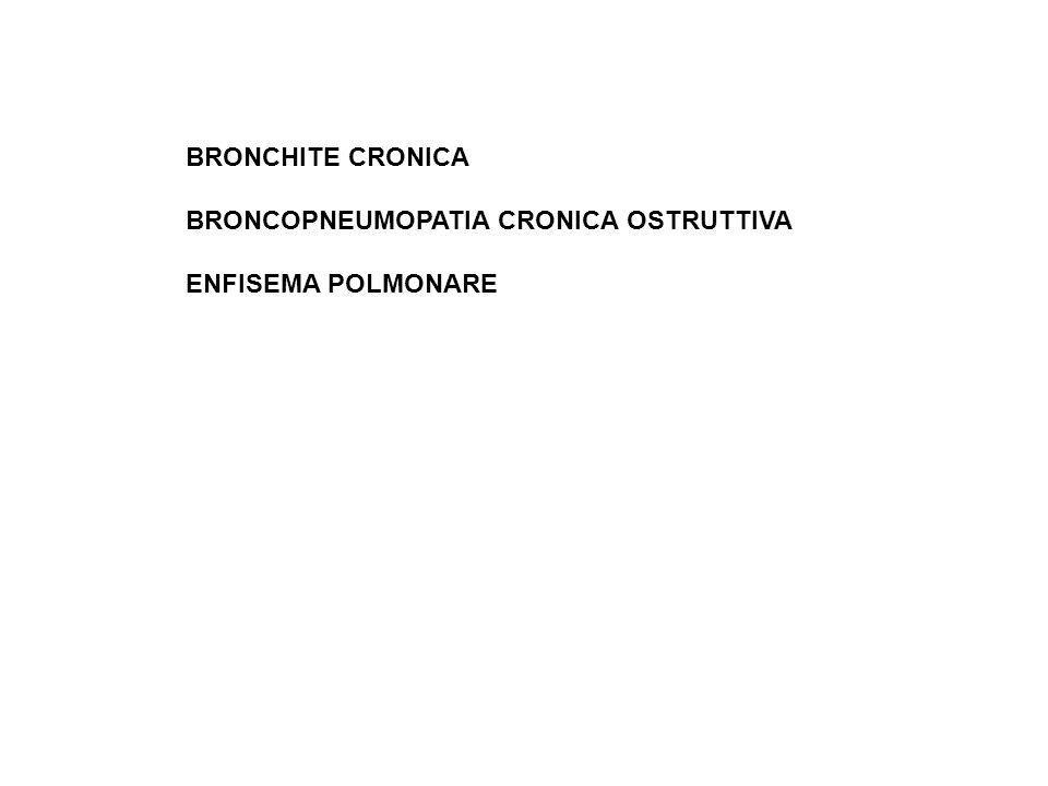 BRONCHITE CRONICA BRONCOPNEUMOPATIA CRONICA OSTRUTTIVA ENFISEMA POLMONARE