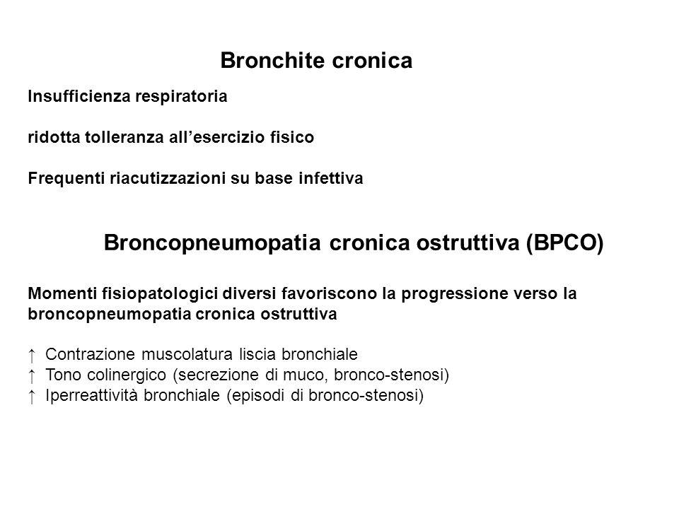 Insufficienza respiratoria ridotta tolleranza allesercizio fisico Frequenti riacutizzazioni su base infettiva Broncopneumopatia cronica ostruttiva (BP