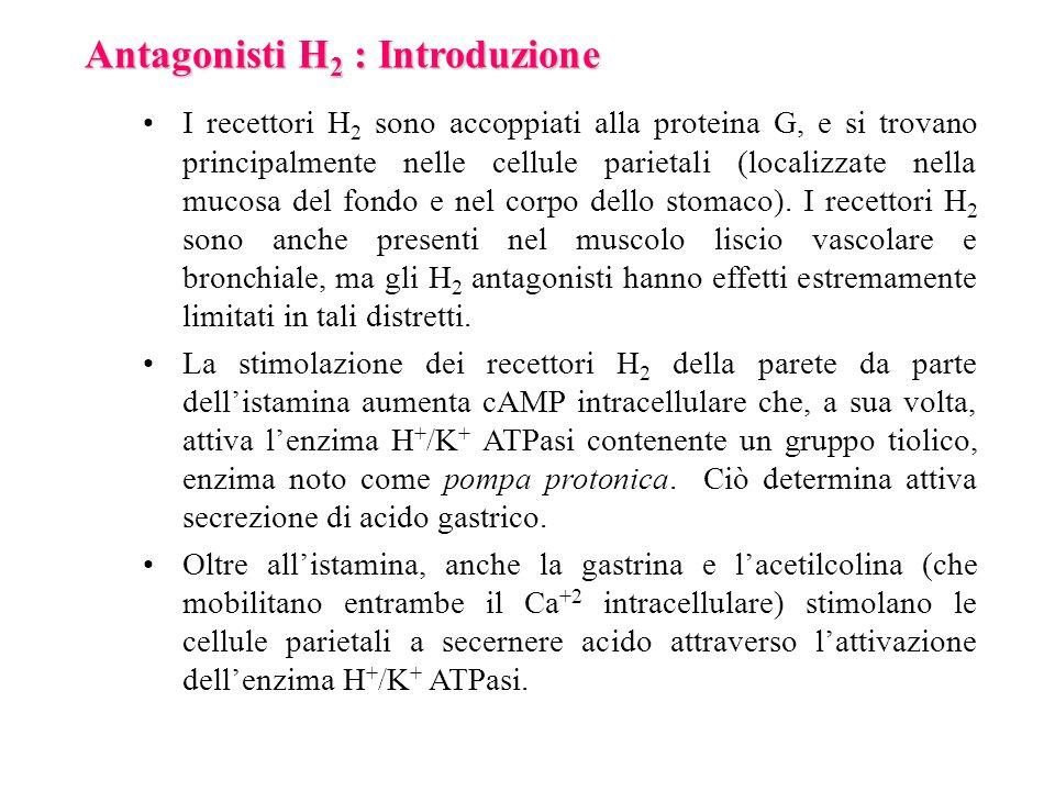 Antagonisti H 2 : Introduzione I recettori H 2 sono accoppiati alla proteina G, e si trovano principalmente nelle cellule parietali (localizzate nella