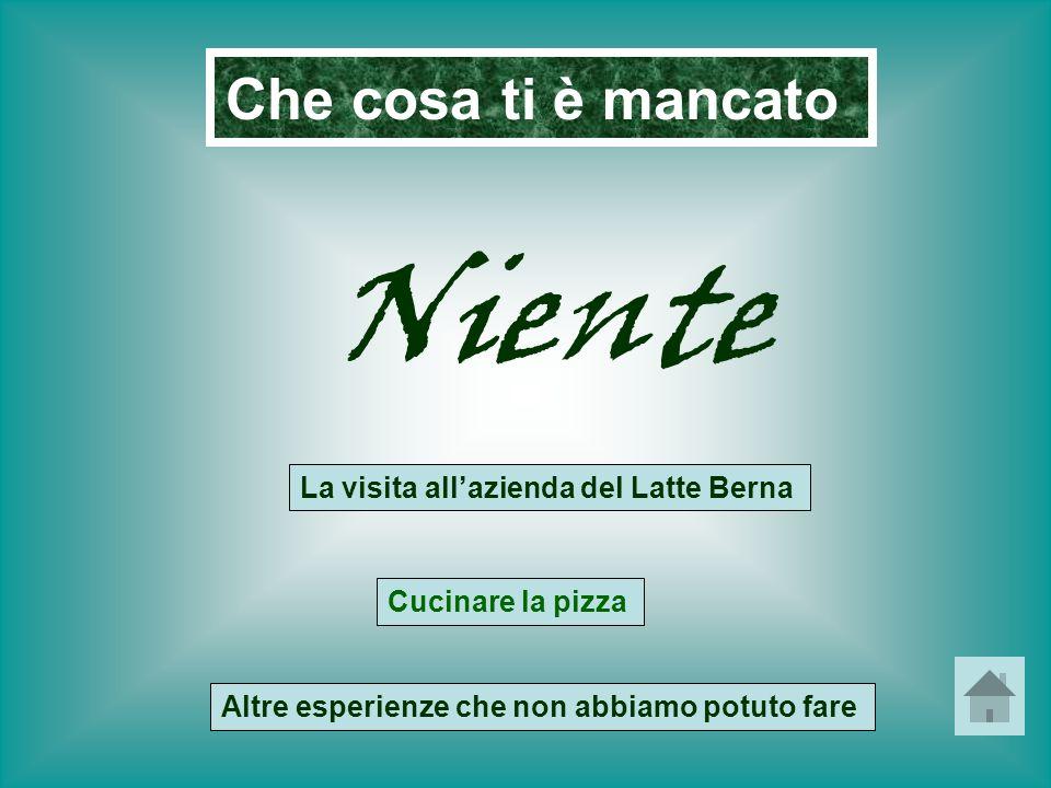 Che cosa ti è mancato Niente La visita allazienda del Latte Berna Cucinare la pizza Altre esperienze che non abbiamo potuto fare