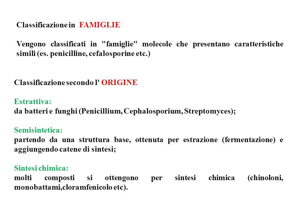 Classificazione in FAMIGLIE Vengono classificati in