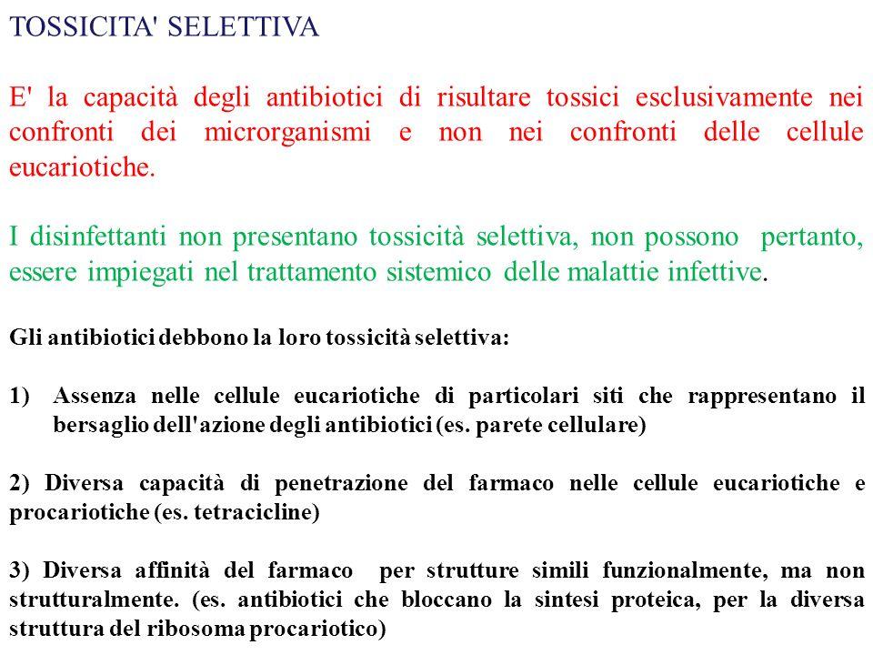 TOSSICITA' SELETTIVA E' la capacità degli antibiotici di risultare tossici esclusivamente nei confronti dei microrganismi e non nei confronti delle ce
