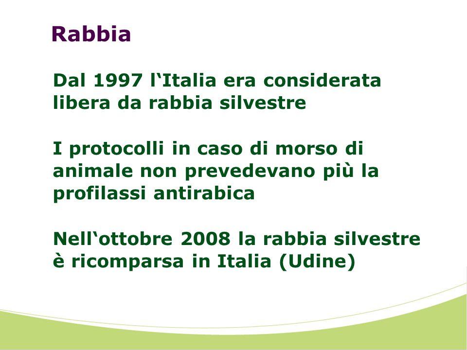 Rabbia Dal 1997 lItalia era considerata libera da rabbia silvestre I protocolli in caso di morso di animale non prevedevano più la profilassi antirabi