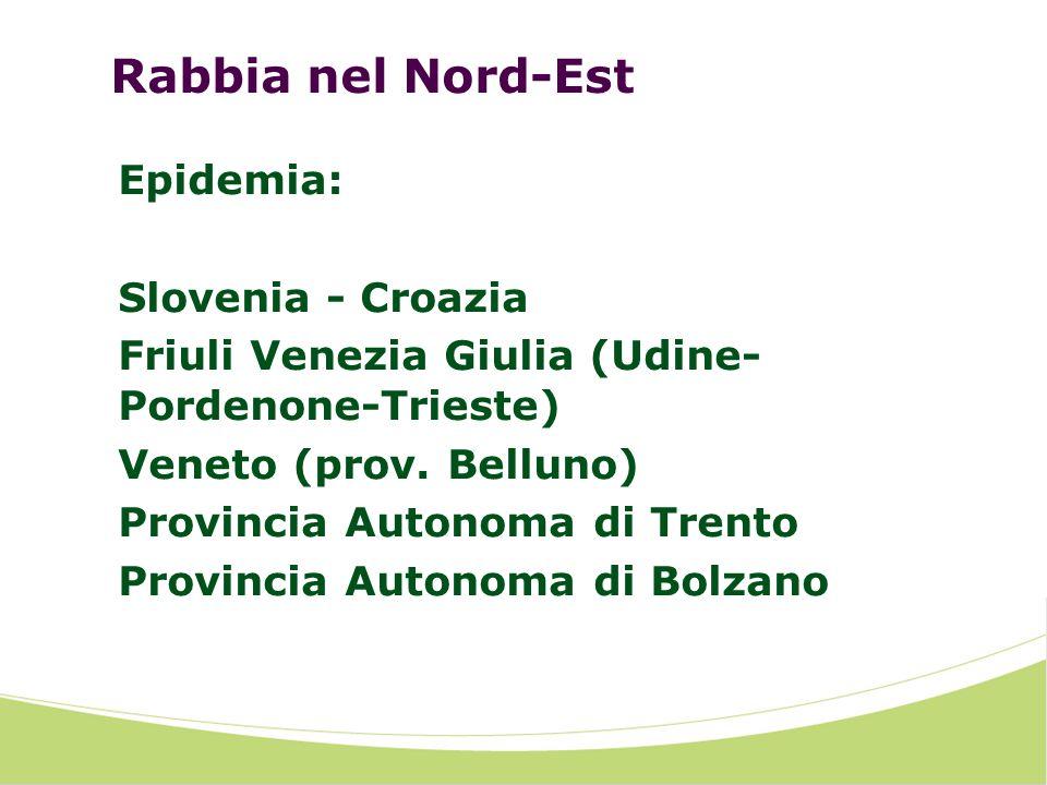 Rabbia nel Nord-Est Epidemia: Slovenia - Croazia Friuli Venezia Giulia (Udine- Pordenone-Trieste) Veneto (prov. Belluno) Provincia Autonoma di Trento