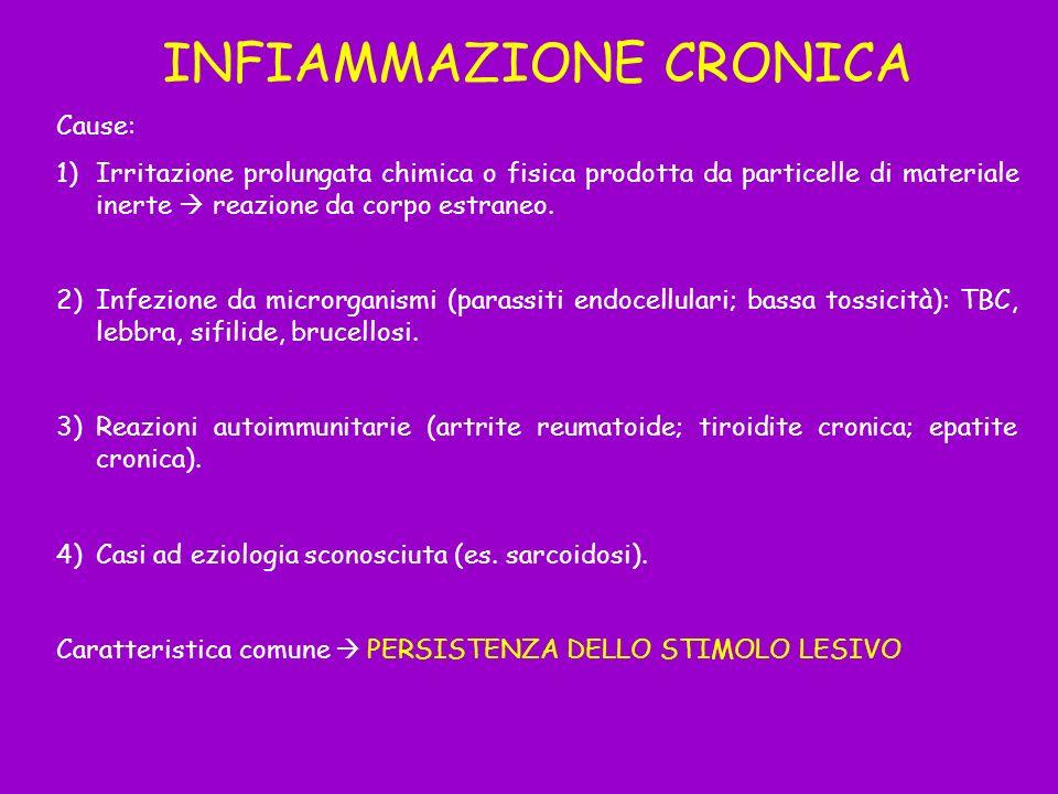INFIAMMAZIONE CRONICA Cause: 1)Irritazione prolungata chimica o fisica prodotta da particelle di materiale inerte reazione da corpo estraneo. 2)Infezi