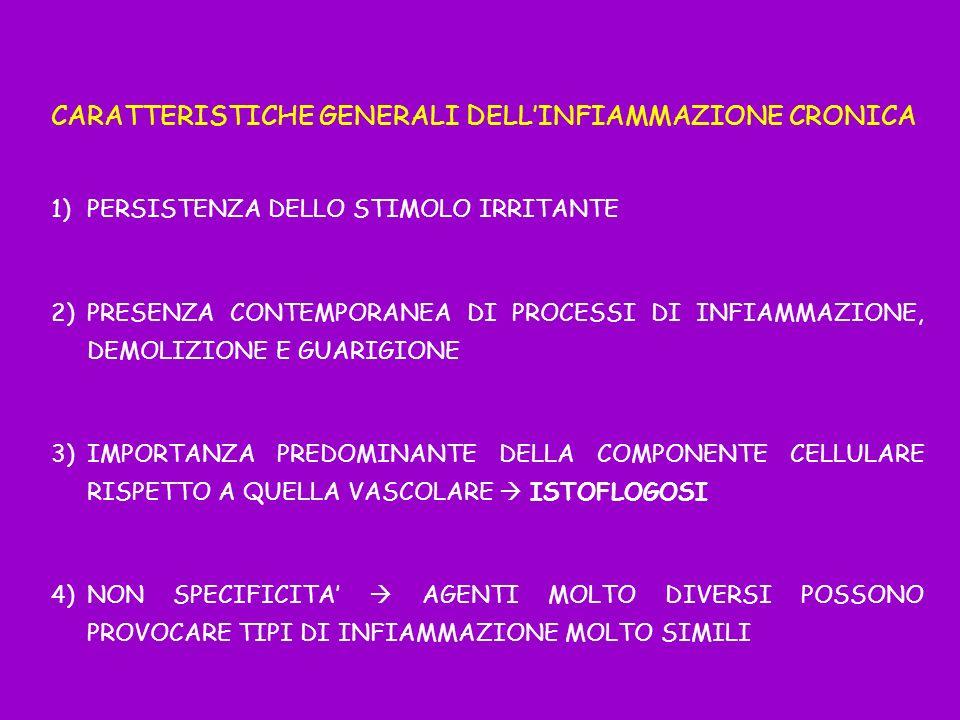 CARATTERISTICHE GENERALI DELLINFIAMMAZIONE CRONICA 1)PERSISTENZA DELLO STIMOLO IRRITANTE 2)PRESENZA CONTEMPORANEA DI PROCESSI DI INFIAMMAZIONE, DEMOLI