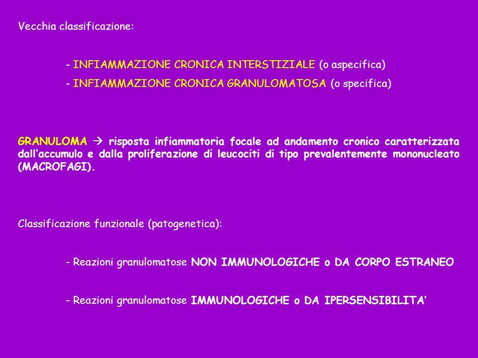 Vecchia classificazione: - INFIAMMAZIONE CRONICA INTERSTIZIALE (o aspecifica) - INFIAMMAZIONE CRONICA GRANULOMATOSA (o specifica) GRANULOMA risposta i