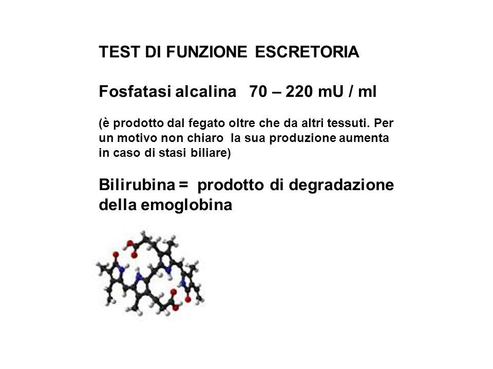 TEST DI FUNZIONE ESCRETORIA Fosfatasi alcalina 70 – 220 mU / ml (è prodotto dal fegato oltre che da altri tessuti. Per un motivo non chiaro la sua pro