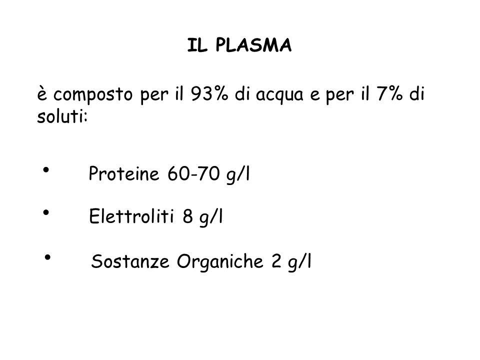 La parte liquida PLASMA Il plasma è un liquido viscoso di colore giallo paglierino costituito da acqua e da sostanze solide (elettroliti, vitamine e p