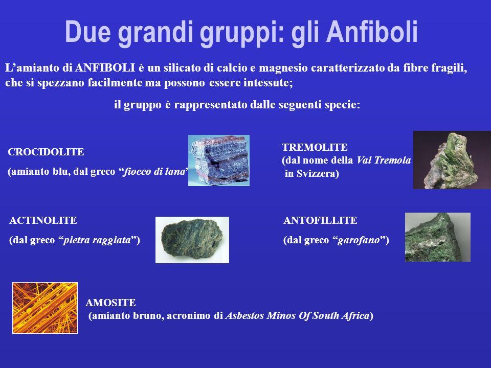 AMOSITE (amianto bruno, acronimo di Asbestos Minos Of South Africa) CROCIDOLITE (amianto blu, dal greco fiocco di lana) Due grandi gruppi: gli Anfibol