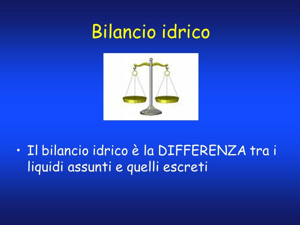 Bilancio idrico Il bilancio idrico è la DIFFERENZA tra i liquidi assunti e quelli escreti