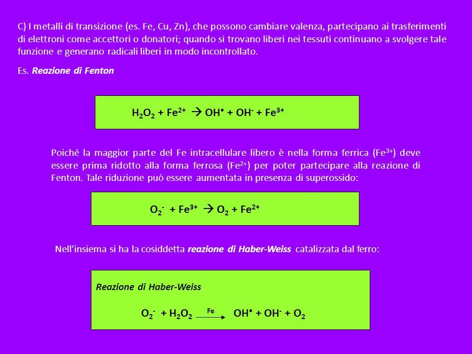 C) I metalli di transizione (es. Fe, Cu, Zn), che possono cambiare valenza, partecipano ai trasferimenti di elettroni come accettori o donatori; quand