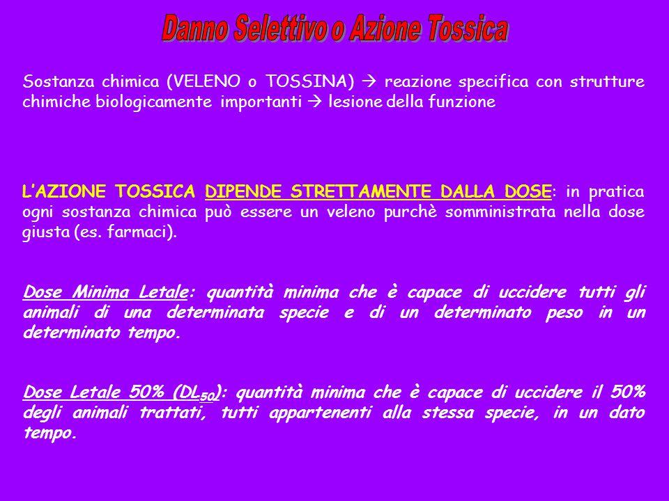 Sostanza chimica (VELENO o TOSSINA) reazione specifica con strutture chimiche biologicamente importanti lesione della funzione LAZIONE TOSSICA DIPENDE