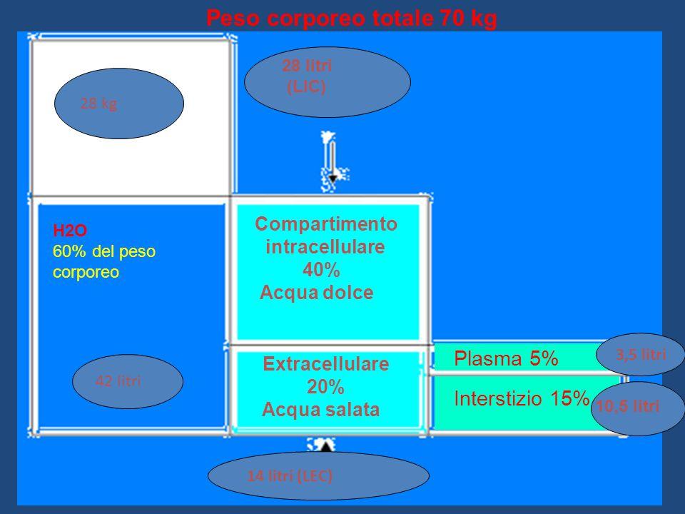 VALUTAZIONE IDRATAZIONE Rapporto Urea/Creatininemia (BUN/Creatininemia*) >40 (>20)= prerenale = elevato apporto proteico, emorragia gastroenterica, ipoperfusione renale < 25 (<12) si ha nel digiuno, dieta ipoproteica, cirrosi, o necrosi tubulare acuta *Urea= BUN x 0,469 Il calcolo del deficit di acqua (in ml) si ottiene Maschio: 0,5 x Peso corp.