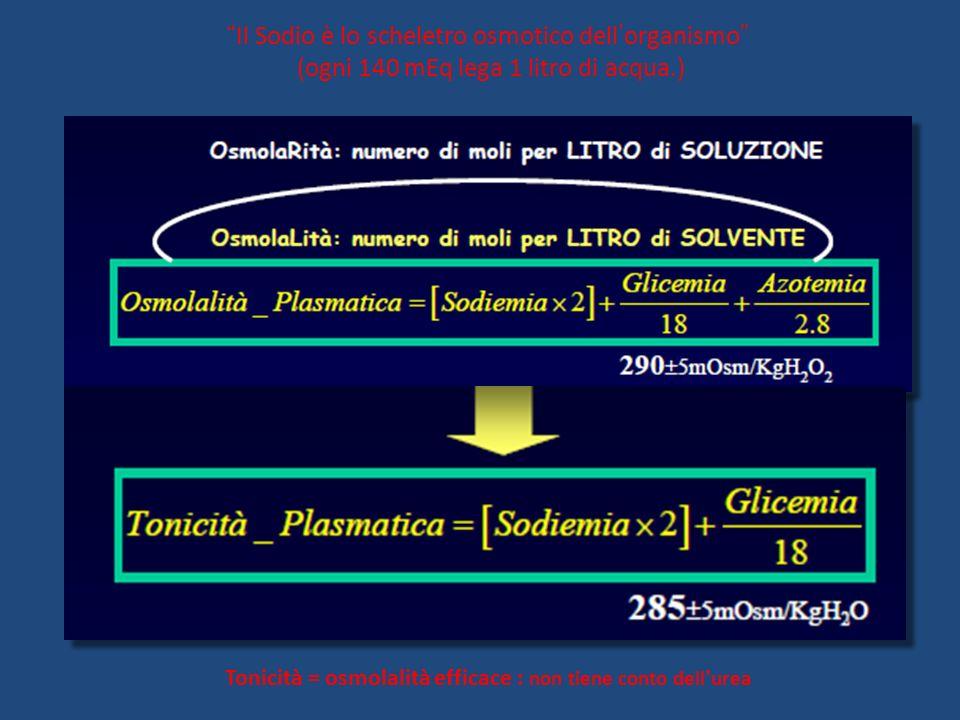 Tonicità = osmolalità efficace : non tiene conto dellurea Il Sodio è lo scheletro osmotico dellorganismo (ogni 140 mEq lega 1 litro di acqua.)