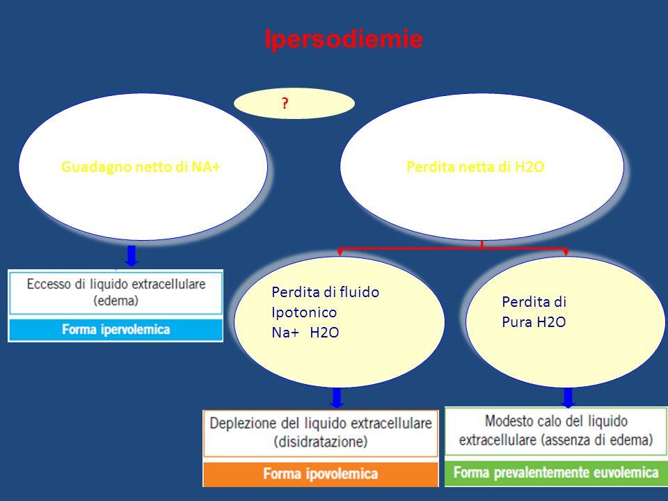Ipersodiemie Guadagno netto di NA+ Perdita netta di H2O Perdita di fluido Ipotonico Na+ H2O Perdita di fluido Ipotonico Na+ H2O Perdita di Pura H2O Pe