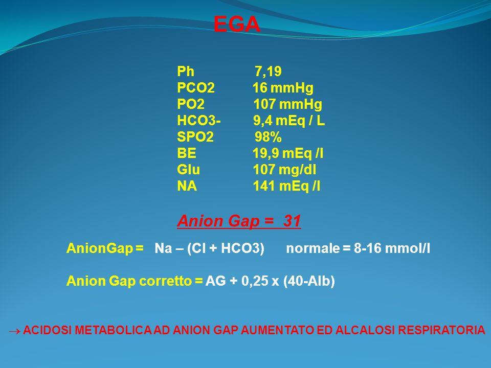 EGA Ph 7,19 PCO2 16 mmHg PO2 107 mmHg HCO3- 9,4 mEq / L SPO2 98% BE 19,9 mEq /l Glu 107 mg/dl NA 141 mEq /l Anion Gap = 31 AnionGap = Na – (Cl + HCO3)