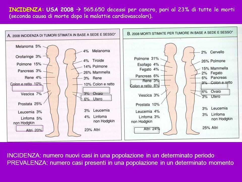 INCIDENZA: USA 2008 565.650 decessi per cancro, pari al 23% di tutte le morti (seconda causa di morte dopo le malattie cardiovascolari).