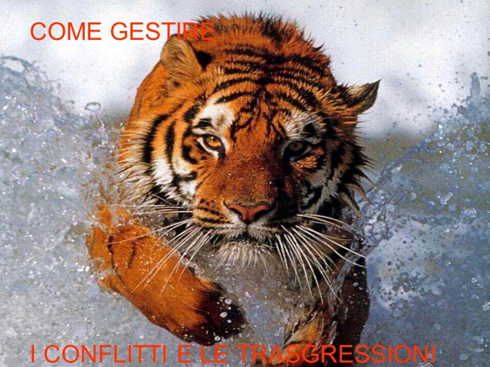 CAVALCARE LA TIGRE: COME GESTIRE I CONFLITTI E LE TRASGRESSIONI