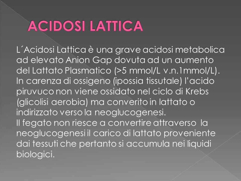 L´Acidosi Lattica è una grave acidosi metabolica ad elevato Anion Gap dovuta ad un aumento del Lattato Plasmatico (>5 mmol/L v.n.1mmol/L). In carenza