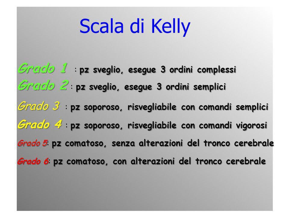Scala di Kelly Grado 1 pz sveglio, esegue 3 ordini complessi Grado 1 : pz sveglio, esegue 3 ordini complessi Grado 2 pz sveglio, esegue 3 ordini sempl