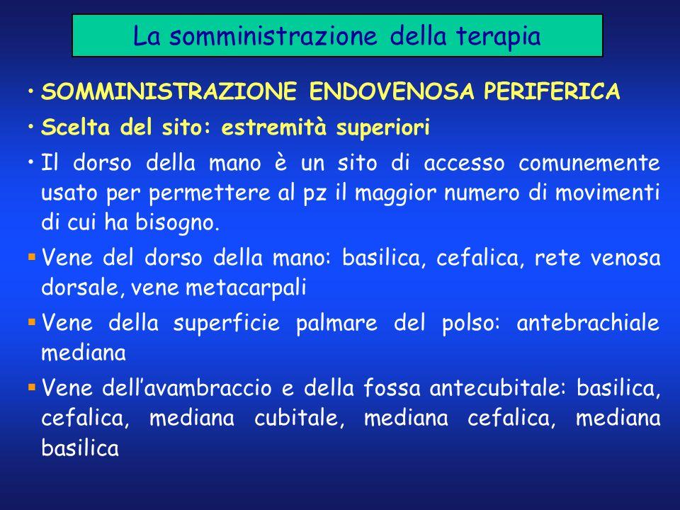 La somministrazione della terapia SOMMINISTRAZIONE ENDOVENOSA PERIFERICA Scelta del sito: estremità superiori Il dorso della mano è un sito di accesso