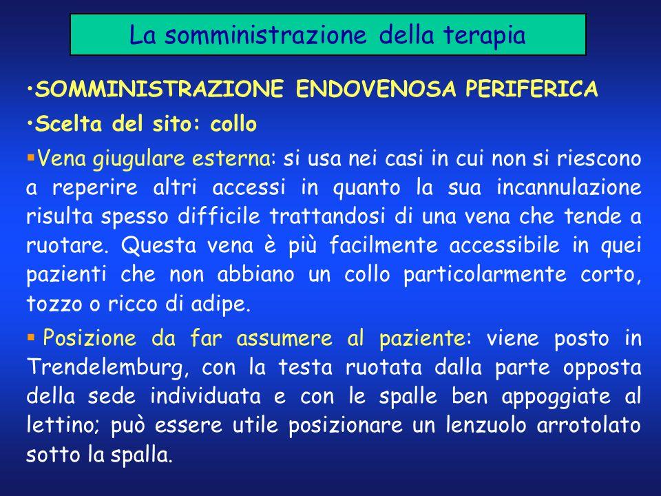La somministrazione della terapia SOMMINISTRAZIONE ENDOVENOSA PERIFERICA Scelta del sito: collo Vena giugulare esterna: si usa nei casi in cui non si