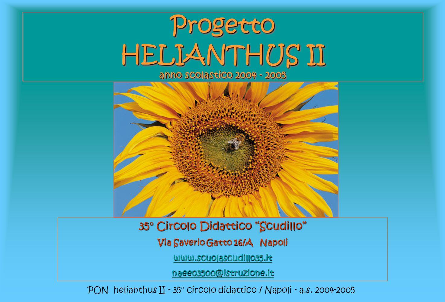 PON helianthus II - 35° circolo didattico / Napoli - a.s. 2004-2005 Progetto HELIANTHUS II anno scolastico 2004 - 2005 35° Circolo Didattico Scudillo