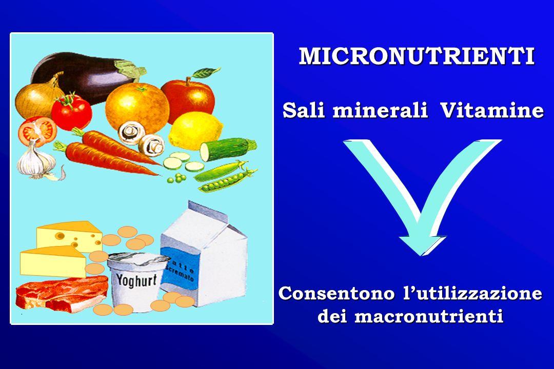 MICRONUTRIENTI Vitamine Sali minerali Consentono lutilizzazione dei macronutrienti