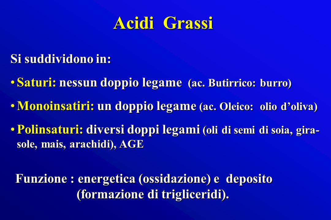 Acidi Grassi Si suddividono in: Saturi: nessun doppio legame (ac. Butirrico: burro)Saturi: nessun doppio legame (ac. Butirrico: burro) Monoinsatiri: u