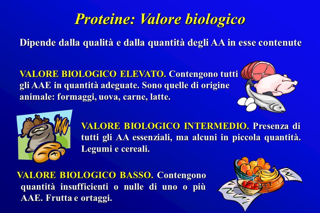 VALORE BIOLOGICO BASSO. Contengono quantità insufficienti o nulle di uno o più AAE. Frutta e ortaggi. VALORE BIOLOGICO BASSO. Contengono quantità insu