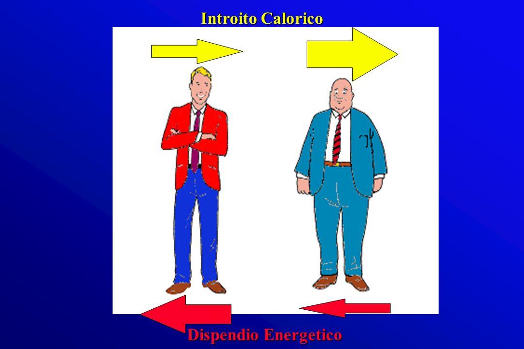 Dispendio Energetico Introito Calorico