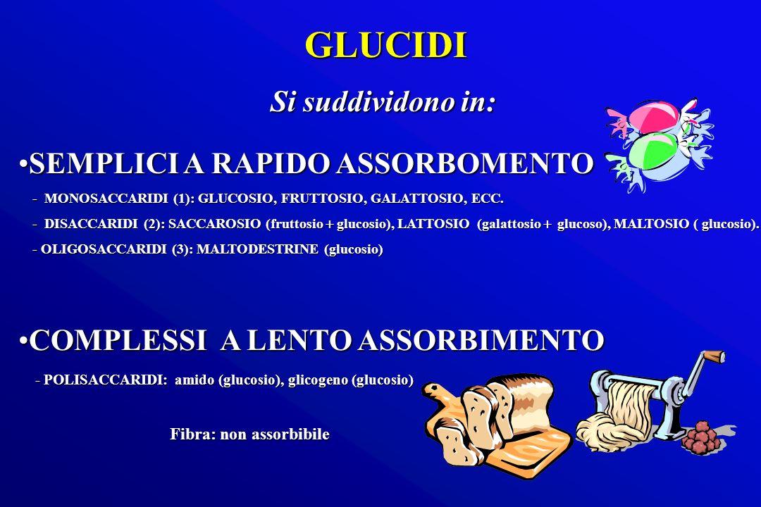 GLUCIDI Si suddividono in: SEMPLICI A RAPIDO ASSORBOMENTOSEMPLICI A RAPIDO ASSORBOMENTO - MONOSACCARIDI (1): GLUCOSIO, FRUTTOSIO, GALATTOSIO, ECC. - M