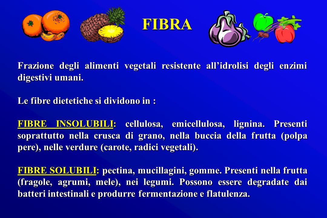 Frazione degli alimenti vegetali resistente allidrolisi degli enzimi digestivi umani. Le fibre dietetiche si dividono in : FIBRE INSOLUBILI: cellulosa
