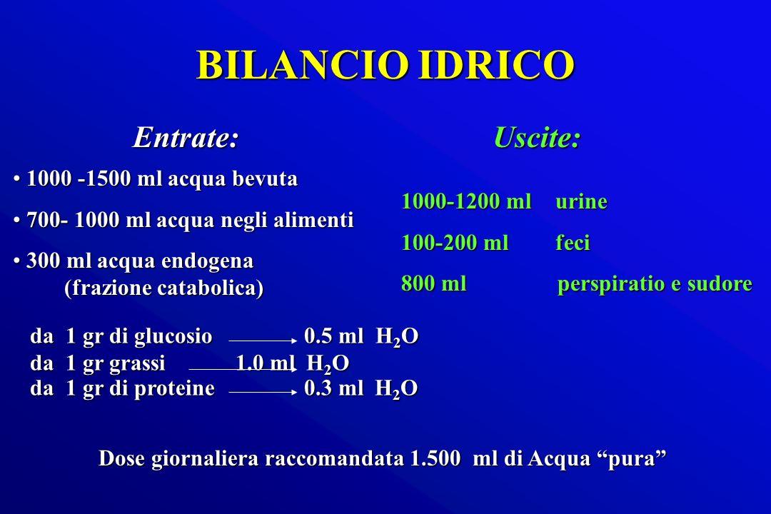 BILANCIO IDRICO Entrate: 1000 -1500 ml acqua bevuta 1000 -1500 ml acqua bevuta 700- 1000 ml acqua negli alimenti 700- 1000 ml acqua negli alimenti 300