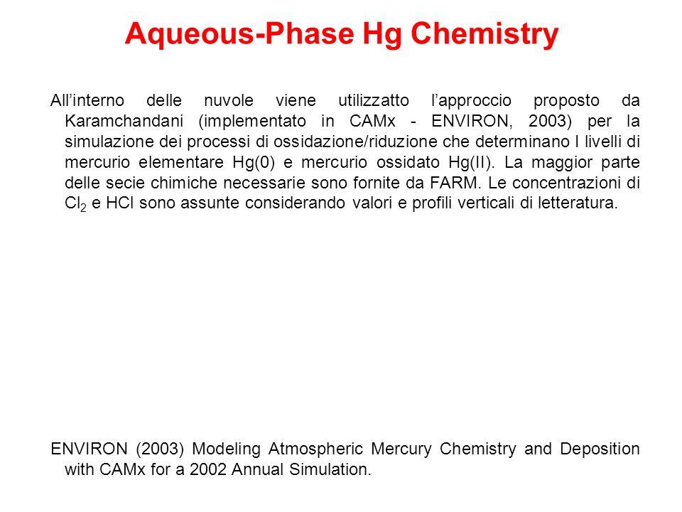 Allinterno delle nuvole viene utilizzatto lapproccio proposto da Karamchandani (implementato in CAMx - ENVIRON, 2003) per la simulazione dei processi di ossidazione/riduzione che determinano I livelli di mercurio elementare Hg(0) e mercurio ossidato Hg(II).