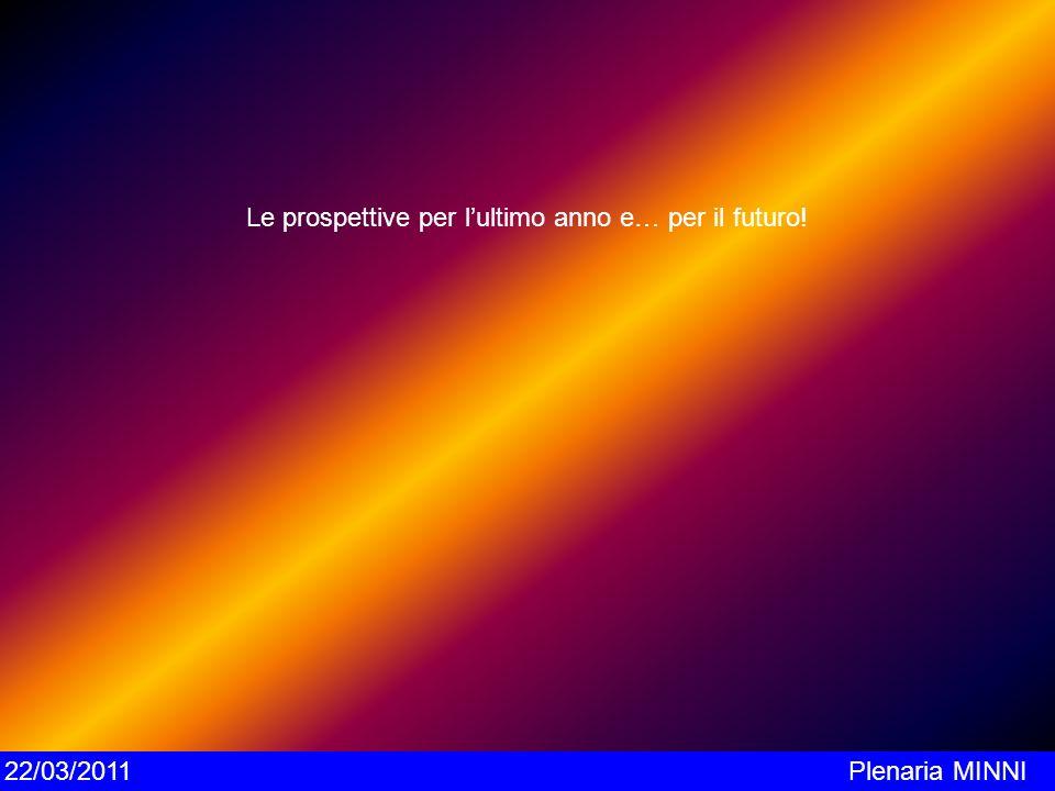 Le prospettive per lultimo anno e… per il futuro! 22/03/2011Plenaria MINNI