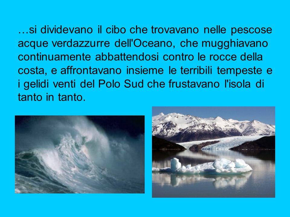 …si dividevano il cibo che trovavano nelle pescose acque verdazzurre dell'Oceano, che mugghiavano continuamente abbattendosi contro le rocce della cos