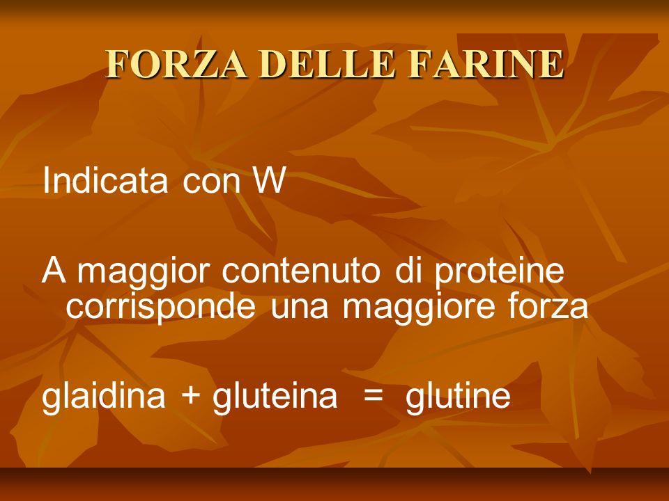 FORZA DELLE FARINE Indicata con W A maggior contenuto di proteine corrisponde una maggiore forza glaidina + gluteina = glutine