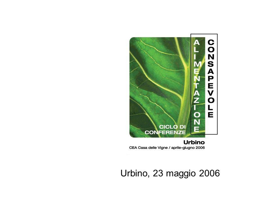 ItaliaMarcheUrbino Aziende Agricole2.500.00066.563998 Az biologiche50.0002.18797 % Az bio sul totale Az Agricole 2 %3,3 %9,7 % Dati 5° Censimento Generale Agricoltura ISTAT – anno 2000 Un po di dati…