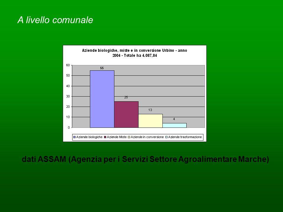dati ASSAM (Agenzia per i Servizi Settore Agroalimentare Marche) A livello comunale