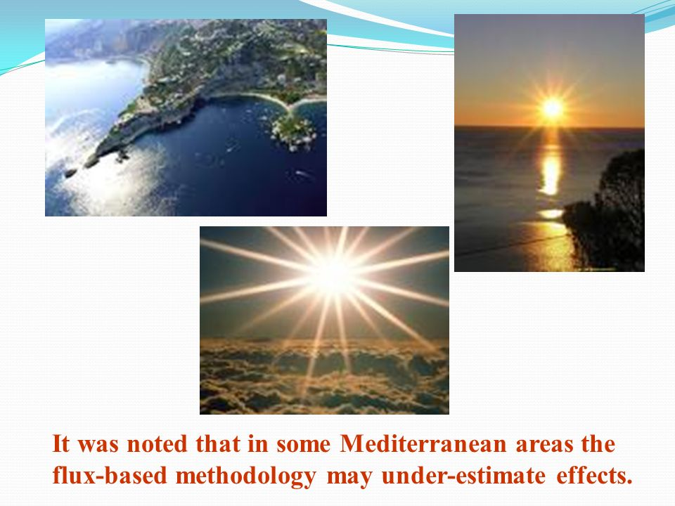 It was noted that in some Mediterranean areas the flux-based methodology may under-estimate effects.